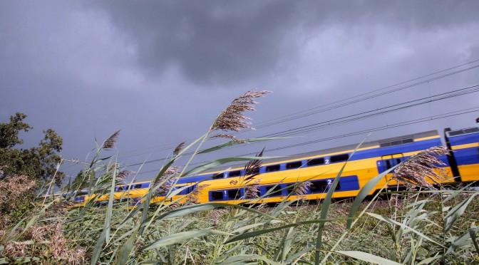 Nederland is geen land meer, maar een stad in de eenentwintigste eeuw: een megastad.