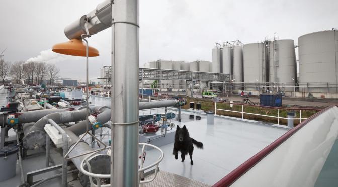 Industriebeleid in Nederland: De overheid als stiefmoeder  van de industrie (DI, 7, 26 april 1994